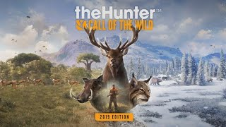 The hunter chasse au lion