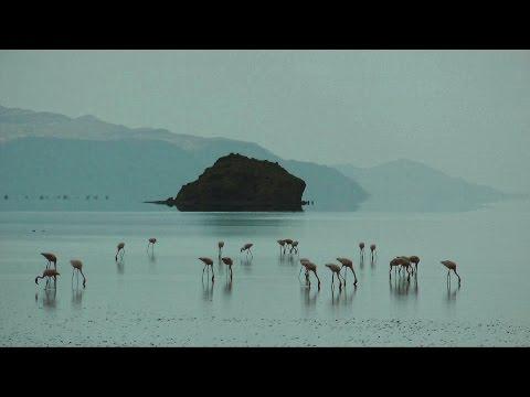 Ol Doinyo Lengai & Lake Natron, Tanzania in HD