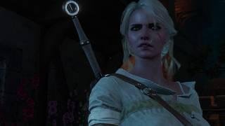 The Witcher 3  Wild Hunt – Ciri has sex with Sasha