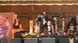 Eluveitie - 2 - Meet the Enemy FULL HD (Live at Metalfest, Poland 2012)