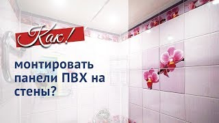 Отделка стен панелями ПВХ(Подробности на сайте http://www.sformat.ru/catalog/paneli-pvkh/ Панели ПВХ - превосходный отделочный материал, который не..., 2012-02-02T15:20:38.000Z)