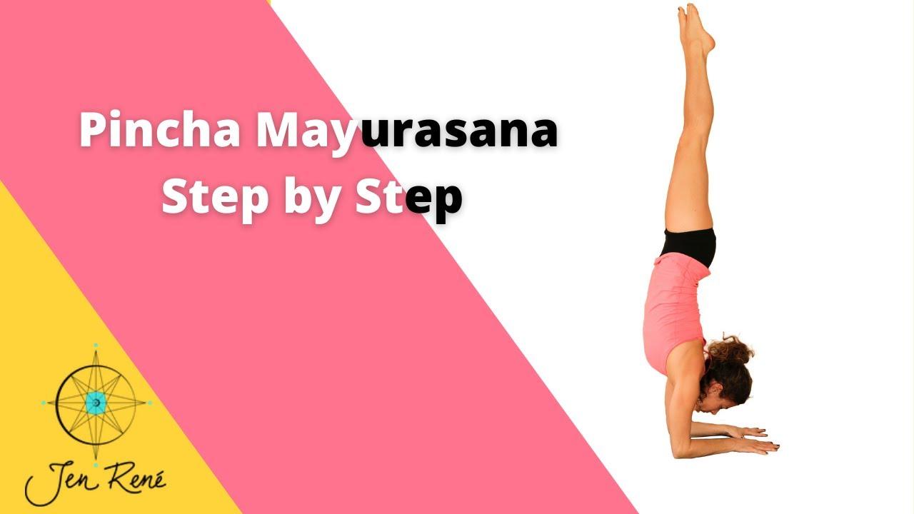 Pincha Mayurasana Step by Step - YouTube