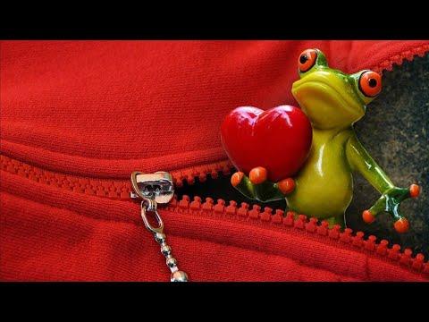 la-grenouille-chante-91-comptines