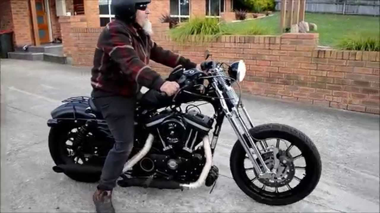List of Synonyms and Antonyms of the Word: sportster springer