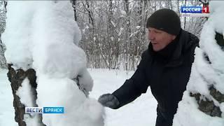 """Снежные фигуры в брянском парке""""Соловьи"""""""