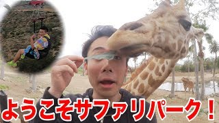 【動物】サファリパークの中を空中散歩できる場所が怖すぎる!!