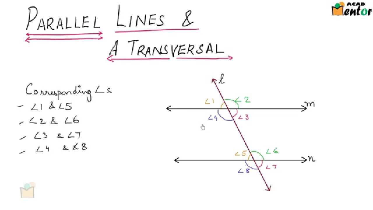 9.6.7 Parllel lines and a transversal - Lines and Angles - Class 9 ...