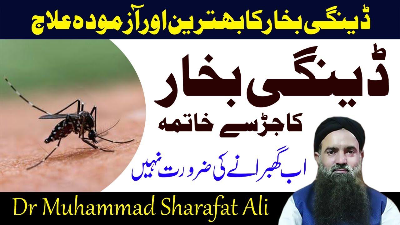 Dangi bukhar ka alaj urdu\hindi | Dr Sharafat Ali | new byan 2020 | bealth care center