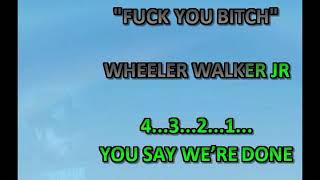 FYB (Fuck You Bitch) in the Style of Wheeler Walker Jr.