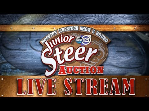 Houston Livestock Show And Rodeo Junior Steer Auction