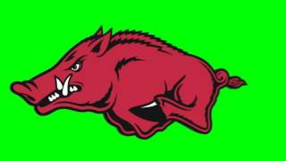 Arkansas Razorbacks logo chroma