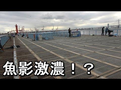 【大黒海釣り施設】魚が釣れないなら釣れる場所に行けばいいじゃない【2018.09.11】