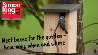 How to put up a nest box in your garden