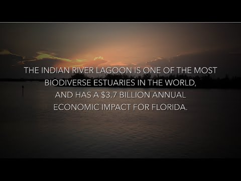 Florida Chamber of Commerce: Indian River Lagoon