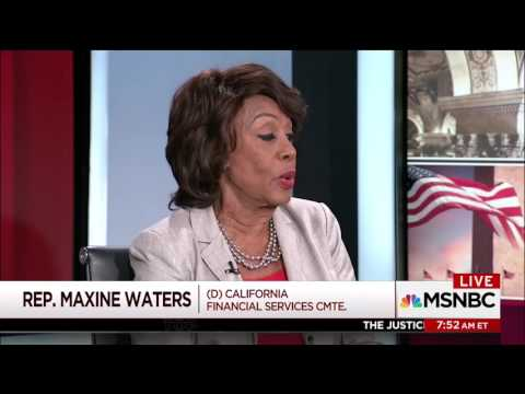 Sam Stein Destroys Maxine Waters Over The Definition Of Collusion
