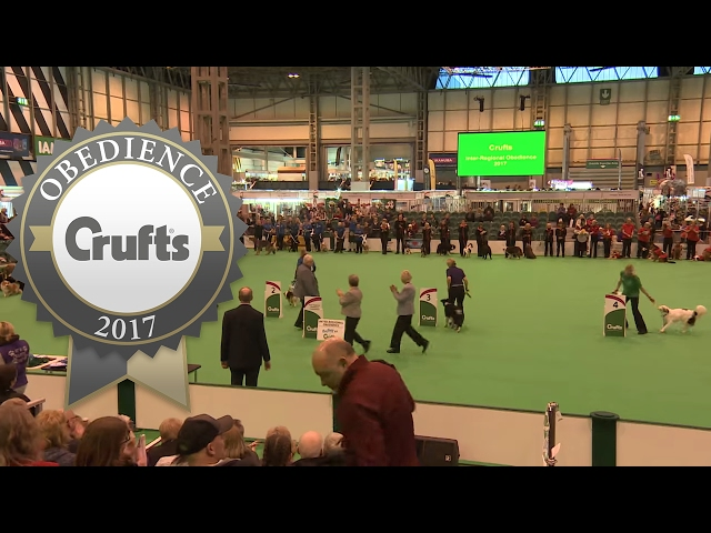 Inter-Regional Obedience - Presentation - | Crufts 2017