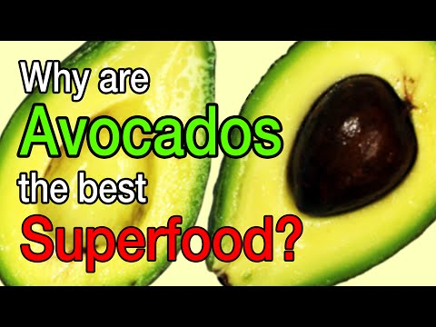 Why are Avocados the best Superfood?