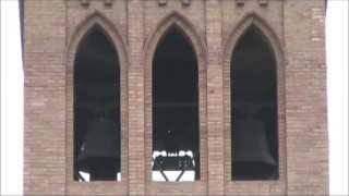 Campane della Parrocchia dei SS. Tecla e Maria delle Grazie in Palazzo di Assisi (PG) (01) v.189