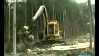 Uzbek prikol kak rabotaet uzbeki v lesu