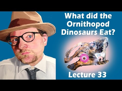 What did the Ornithopod Dinosaurs Eat?