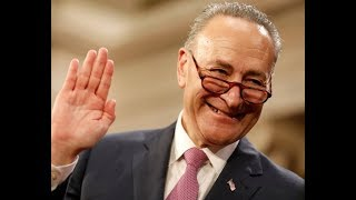 CHUCK SCHUMER'S ATTACK ON TRUMP BACKFIRED IN A BIG WAY!