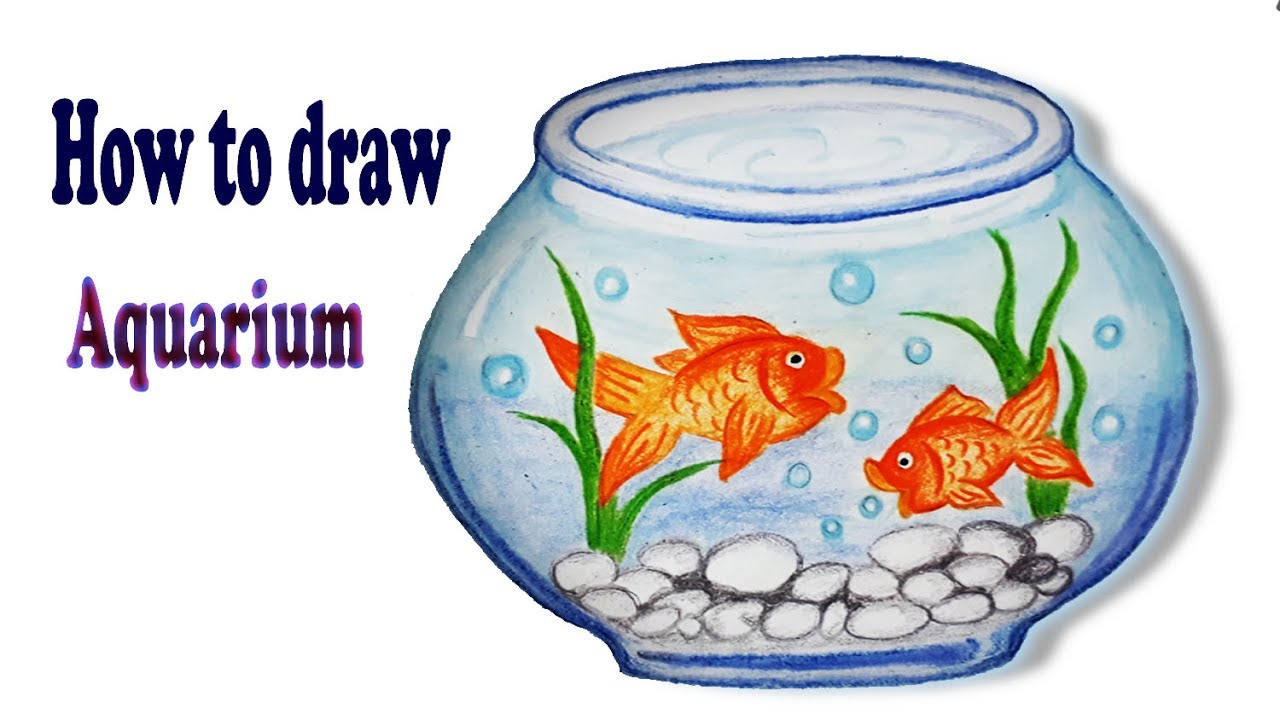 How To Draw Aquarium Step By Step Easy Draw Youtube