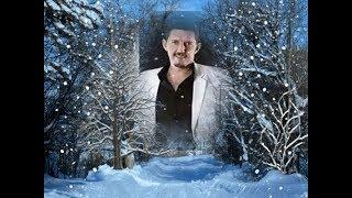 Аркадий Кобяков Королева снежная и бонус