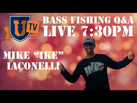 Bass Fishing SECRETS & TIPS : Live