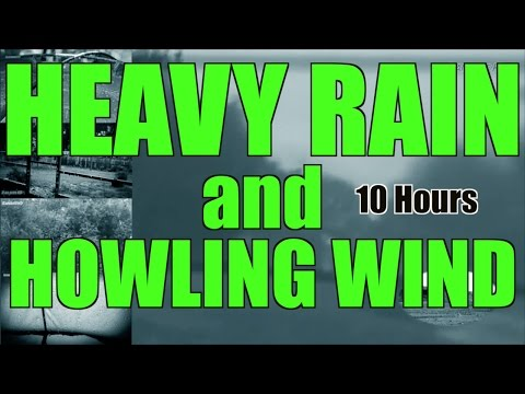 Heavy Pouring Rain and Thunder and Wind | 10 Hours |