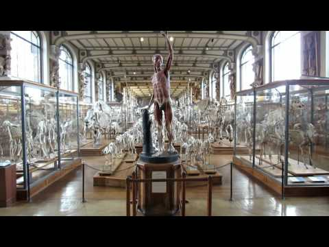 PARIS 2015 - MUSEUM NATIONAL D'HISTOIRE NATURELLE