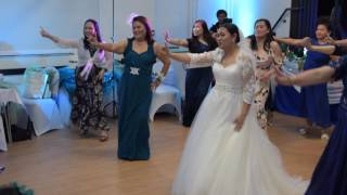 Joanie and Elden's Wedding, Eaton Bray Village Hall, Bedfordshire, 6th May 2017