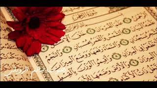 سورة الرحمن بصوت | سالم الرويلي   Surah Alrahman Salem alrwiliy