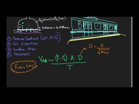 Gas exchange at the alveoli - Video 3: Diffusion