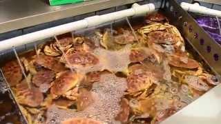 Рынок морепродуктов в Торонто(, 2014-10-22T17:28:55.000Z)