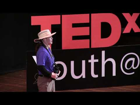 We want YOU to help our Scientists: The Power of Citizen Science | Emilee Weir | TEDxYouth@Dayton