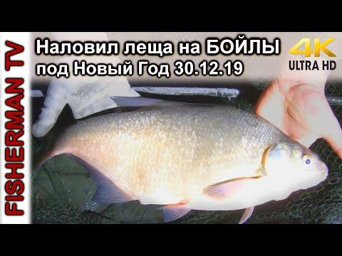 Наловил леща на БОЙЛЫ под Новый Год / Подводная съёмка
