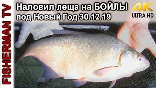 Наловил леща на БОЙЛЫ под Новый Год Подводная съёмка