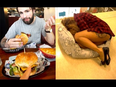 Burgers, Bicycles & Sam in a Dogbed
