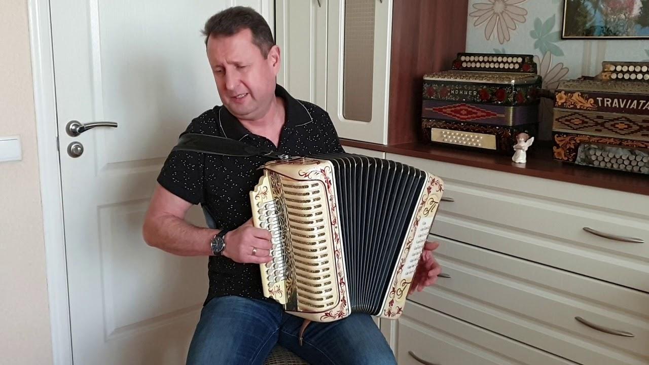 Паша гармонист - Душа болит