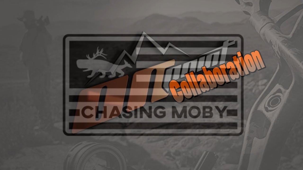 SHOOTING THE BUDGET BOW WITH A HINGE! Collaboration With Chasing Moby