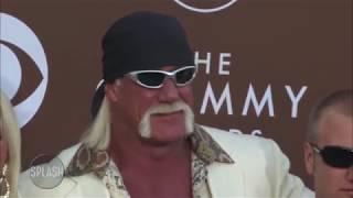 Hulk Hogan reinstated into WWE Hall of Fame | Daily Celebrity News | Splash TV