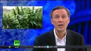 Debunking the Latest Smear Campaign Against Marijuana