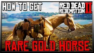 How to Get Red Dead Redemption 2 Rare Gold Horse with Location! RDR2 Gold Horse