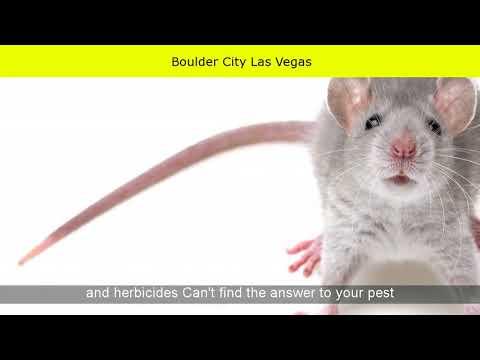 Boulder City Las Vegas
