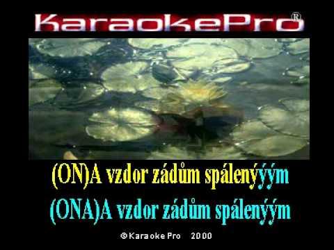 Eva Pilarová a Waldemar Matuška - Tam za vodou v rákosí (karaoke)