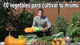 Comida gratis de por vida #2. les muestro my huerto.