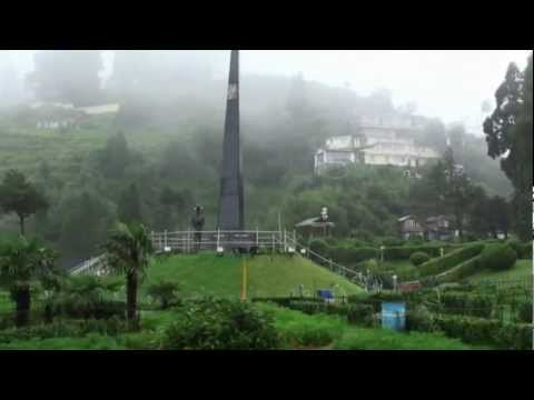 Darjeeling Beauty