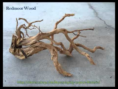 Redmoor Wood Aquascaping Layout Material Planted Tank Fish Driftwood Seiryu  Stone   YouTube