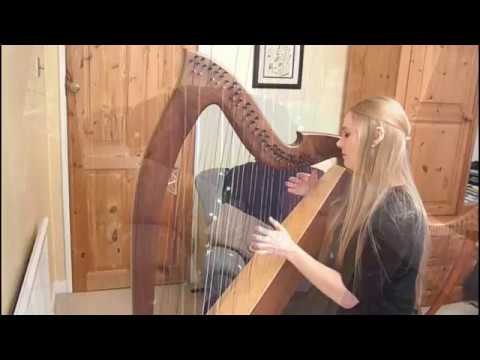 Say You Won't Let Go - James Arthur (Harp Cover)