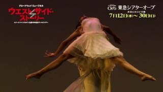 ブロードウェイ・ミュージカル「ウエスト・サイド・ストーリー」魅力が詰まったオフィシャルムービー!!